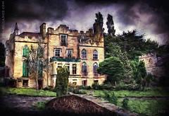 The Abbey (sbox) Tags: ireland painterly architecture buildings textures kildare celbridge celbridgeabbey
