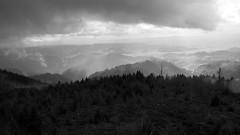 Rain Landscape (rudolphfelix) Tags: white black tree rain clouds forest canon germany landscape deutschland eos natur wolken landschaft regen photografie 600d