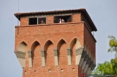 Torre della fortezza vecchia (Giovanni V.) Tags: italy panorama italia torre it ponte pisa shipyard fortress hdr cittadella gioco fortezza vecchia arsenali