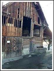 Tresterfässer, Mosterei, Alpnach (Weihler) Tags: luzern lucerne obwalden trester mosterei alpnach