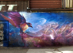 Spread Your Wings (Georgie_grrl) Tags: streetart toronto ontario colour bird beauty stars flow graffiti flying wings expression curves flight creative alleyway swirls colourful kensingtonmarket magical cosmic canonpowershotg15