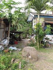 """Luang Prabang: village sur l'autre rive de la rivière Nam Khan <a style=""""margin-left:10px; font-size:0.8em;"""" href=""""http://www.flickr.com/photos/127723101@N04/23661198440/"""" target=""""_blank"""">@flickr</a>"""