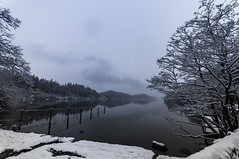 2016-01-16 055 (jamie reilly) Tags: trees snow water grass river scotland pier boat highlands scenery stream burn loch boathouse ard aberfoyle lochard