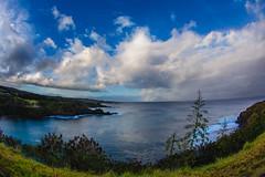 2016.01.06-Maui-015 (c_tom_dobbins) Tags: hawaii pacific maui kapalua hdr nakalele mauisnorthshore
