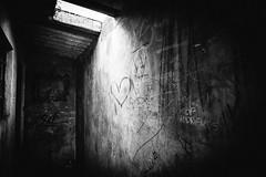 L.O.V.E. (Ilanna Neves) Tags: light blackandwhite love wall heart amor sopaulo streetphotography pb spot corao pretoebranco paranapiacaba