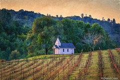 Chapel in Mariposa (buffdawgus) Tags: church vineyard motherlode goldcountry californa sierranevadafoothills mariposaca canonrebelxti canon1855mmis topazsw lightoom5
