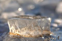 Eiszeit (nirak68) Tags: winter cold ice river deutschland lbeck eis wakenitz flus eisstcke eisschollen zugefroren icebound 006366 c2016karinslinsede