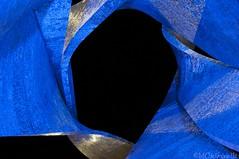 (Blueshift) Black Hole (Joe J Black) Tags: light red black milan reflection tree foglie night nikon hole expo geometry milano tag un foglia astratto buco rosso nero notte pavillion pianta riflesso trama 2015 allaperto aggiungi expo2015 d300s
