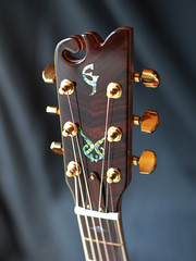 Custom Handmade Concert Acoustic Guitar with Brazilian Rosewood (elijahjewelguitars) Tags: music concert guitar handmade guitars acoustic custom musicinstrument acousticguitar stringedinstrument acousticguitars concertguitar concertguitars customhandmadeconcertacousticguitarwithbrazilianrosewood