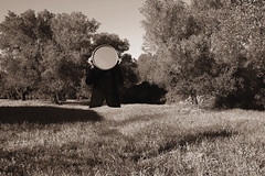 Half soul (marcus.greco) Tags: selfportrait man nature mirror natural surreal natura campagna specchio seppia surreale