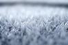 'What Youth deemed crystal, Age finds out was dew' (Bilderwense) Tags: schnee winter snow macro ice 50mm frozen nikon wasser soft frost crystals dof bokeh outdoor smooth frosty depthoffield chilly nikkor f18 makro eis schärfentiefe textur eiskristalle bokehlicious d5000 macromonday bokehrama macrodreams frostopia