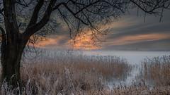 Freezing in the fog 2 (piotrekfil) Tags: winter sunset sky mist lake tree ice nature fog clouds landscape pentax poland sigma1750mmf28 piotrfil