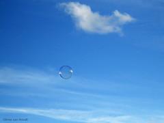 Bubble... (by_irma) Tags: amsterdam bubble lucht zeepbel