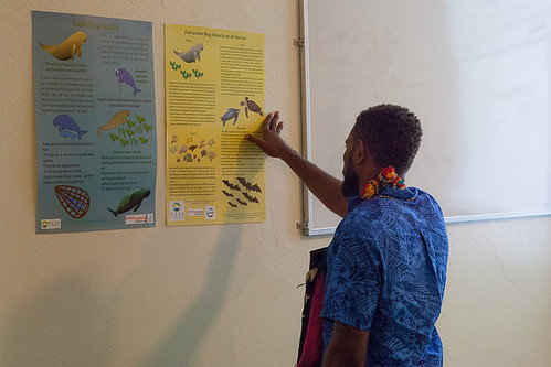 Dugong Launch-reading posters