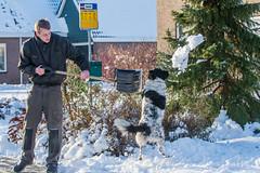 20160116-3378 (Sander Smit / Smit Fotografie) Tags: winter sneeuw delfzijl sneeuwpret slee winterweer