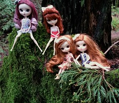 pretty girls  (Emily Emily!) Tags: green forest moss woods dolls purple burgundy peaceful evergreen greenery pullip redwood redheads pinecones