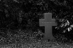 Love is stronger than death (mona_dee) Tags: street people urban love death cemetary canoneos60d monadee