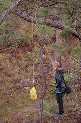 Bear (er... Jaguar) Bagging (ckocur) Tags: mountains mexico town hiking jalisco sierra sansebastian sansebastiandeloeste sierraoccidental