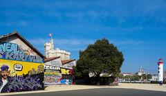 RX100-3765 (danguerin75) Tags: graffiti larochelle rx100
