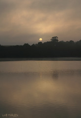 Early Song (luz.marsen) Tags: morning trees sunset sea wild summer brown sun mist lake reflection tree nature water up yellow fog clouds sunrise reflections dark relax outdoors rising golden early waves quiet sundown outdoor ripple relaxing foggy tranquility wave calm beginning hour ripples rise liquid stirred