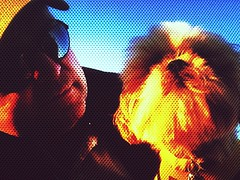 Beholding Sunset (johnnyp_80435) Tags: sunset sundown shihtzu springbrook