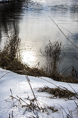 8 February 2016 (runningman1958) Tags: winter snow ice nature pond nikon 365 winterscene 365dayproject d7200 nikond7200