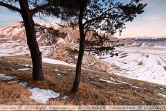 L'inverno che non c' . (ptalamy) Tags: park travel trees sunset italy mountain snow mountains tree clouds landscape landscapes italia pg unesco national di perugia umbria umb norcia castelluccio 500px clickalps