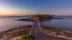 Bare pre-dawn (The Photo Smithy) Tags: sunrise dawn sydney australia laperouse bareisland kamaybotanybaynationalpark