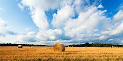 Standish, MI Summer 2014 (hz536n/George Thomas) Tags: summer sky weather farm august canon5d upnorth standish ef1740mmf4lusm cs5