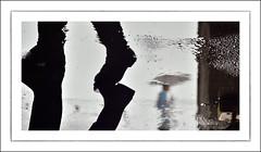 F_DSC7559-Nikon D800E-Nikkor 28-300mm-May Lee  (May-margy) Tags: portrait blur reflection silhouette umbrella puddle bokeh taiwan  raining        keelungcity    repofchina maymargy nikkor28300mm nikond800e  maylee  mylensandmyimagination  naturalcoincidencethrumylens  linesformandlightandshadows fdsc7559 strreetviewphotographytaiwan
