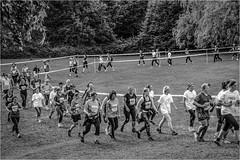 Slottsskogen (P-O Alfredsson) Tags: sports sport göteborg sweden schweden gothenburg running sverige slottsskogen idrott lopp motionslopp