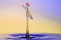 Look (butchinsky) Tags: tat schmid wassertropfen helli skulpturen splitsecond dropart watersculptures helmutschmid waterdropart waterdropphotography tropfenfotografie tropfenfoto tropfenauftropfen dropingwater butchinsky tropfenskulpturen catchtheclimpse