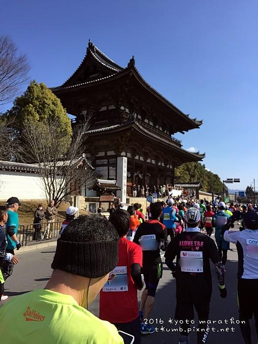 2016京都馬拉松15.JPG