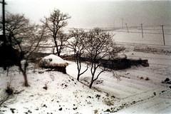 31-658 (ndpa / s. lundeen, archivist) Tags: winter snow color building fall film field rural 35mm snowy nick korea farmland powerlines hut korean seoul fields thatchedroof 1970s southkorea 1972 31 dewolf thatchroof utilitypoles nickdewolf photographbynickdewolf reel31