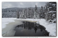 Pb_3088740 (calpha19) Tags: photography hiver ngc lac olympus neige zuiko vosges omd voyages em1 lacdelispach 1260swd lumixforum imagesvoyages
