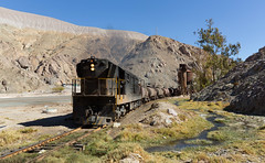 An oasis (david_gubler) Tags: chile train railway llanta potrerillos ferronor