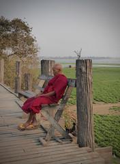 Contemplation (GillWilson) Tags: myanmar amarapura ubeinbridge buddhistmonk