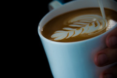Current-E-Formula-E-Long-Beach-2016-HR-Marta-Rovatti-Studihrad-_MGR9492
