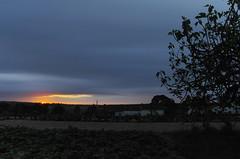 Good Morning ??????? (Capturedbyhunter) Tags: primavera sol portugal sunrise landscape spring do paisagem tokina santarm fernando 35 marques nascer ribatejo coruche 17mm caador agolada fajarda