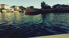 #pictureholic #new #youngphotographer #meandmycamera #followme #lake (miyaprince) Tags: new followme meandmycamera youngphotographer pictureholic