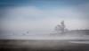 Heaven on earth (Mika Laitinen) Tags: ocean blue sea cloud bird beach nature suomi finland landscape helsinki shore scandinavia vuosaari uusimaa kallvik ef70200mmf4lisusm canon7dmarkii