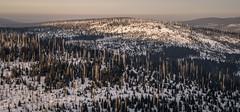 _MAK4836_2016_02_27_1-80 Sek. bei f - 8,0_39 mm_ISO 125 (Markus Kolar braucht kein Photoshop...aber Licht) Tags: schnee nationalpark landschaft wandern bayerischerwald 2016 lusen fotoblosn httpmarkuskolarblogspotde pentaxks2