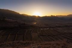 Prelude (Subhadip C, AFIAP) Tags: morning india sunrise landscape dawn golden outdoor fields sunrays shillong furrows meghalaya sunstar subhadip mylliem