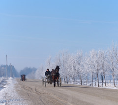 Sonntag Morgen (virgil martin) Tags: winter panorama snow ontario canada landscape frost hoarfrost gimp buggy mennonites wellesleytownship waterlooregion microsoftice oloneo olympusomdem5