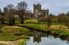 Tintern Abbey, Co.Wexford. (Tony Brierton) Tags: tinternabbey cowexford saltmills