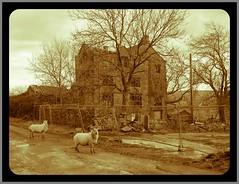 Extwistle Hall (Tony Garofalo) Tags: england building history abandoned architecture nikon outdoor ruin tudor lancashire oldphoto historical mansion elizabethan manor derelict briercliffe burnley buildingsatrisk southpennines extwistlehall coolpixp7000 burnleywayfootpath