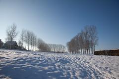 Snow, Bruegel landscape (VISITFLANDERS) Tags: winter landschap vijver sintpietersleeuw visitflanders