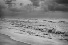 Grey waves. (Prabhu B Doss) Tags: sea blackandwhite bw india beach clouds marina waves fineart bnw tamilnadu bayofbengal sigma1020mm incredibleindia nikond80 prabhubdoss
