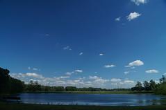 Hummel Pond in June (justinsikes242) Tags: park summer nature landscape pond indiana hummel plainfield