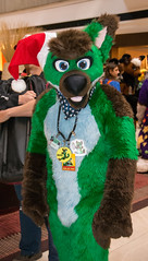 _DSC8523 (Acrufox) Tags: midwest furfest 2015 furry convention december hyatt regency ohare rosemont chicago illinois acrufox fursuit fursuiting mff2015